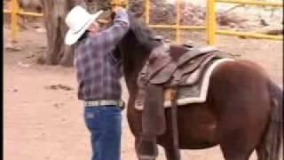 """""""Como amansar caballos sin golpes"""""""