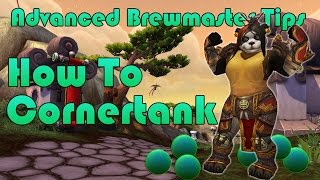 Advanced Brewmaster Monk Tips  Cornertanking