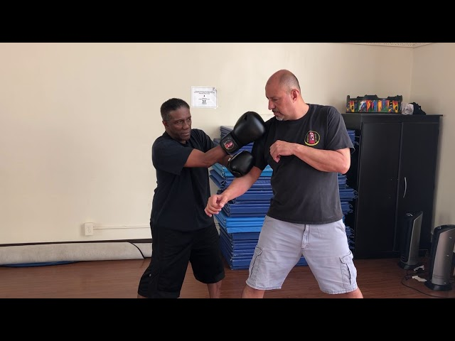 Wing Chun using Boxing Gloves