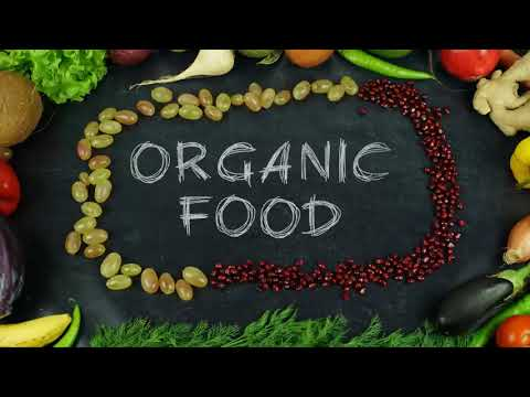 Stop Motion Food Text