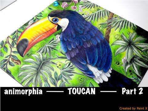 TOUCAN part 2 | ANIMORPHIA | Prismacolor | speed coloring