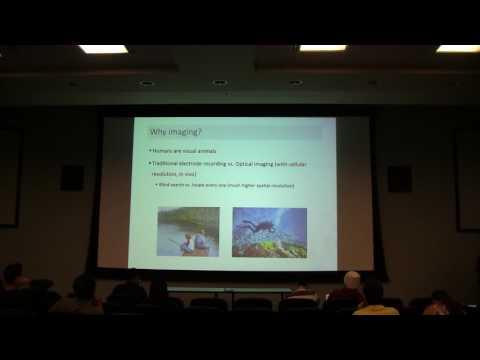 Lecture 30 - TA Yueqi (optical imaging)