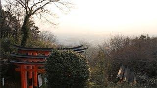 Japan Travel - Fushimi Inari Taisha Shrine, Mountain Top, Cats [Day 6]