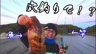 穴釣りであり得ない魚が・・・!! thumbnail