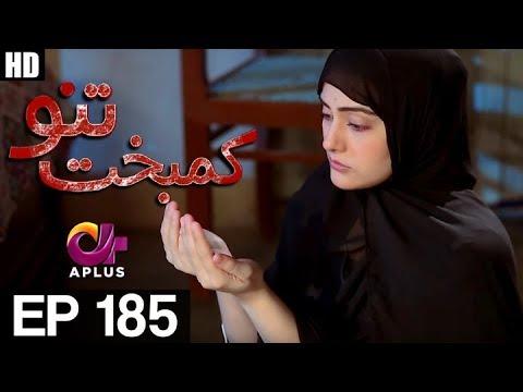 Kambakht Tanno - Episode 185 - A Plus ᴴᴰ Drama