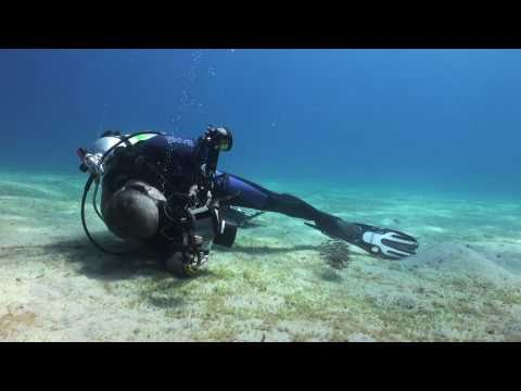 Martin Edge's Underwater Photo Tips.mov