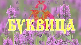 Магия Древних Славян : БУКВИЦА #49