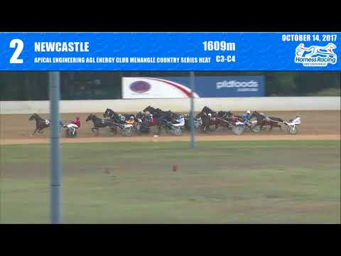 NEWCASTLE - 14/10/2017 - Race 2 - APICAL ENGINEERING AGL ENERGY CLUB MENANGLE COUNTRY SERI…