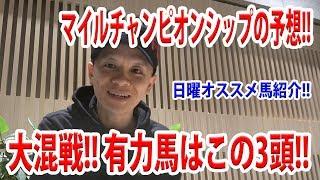 【わさお】マイルチャンピオンシップの予想!!【競馬予想】