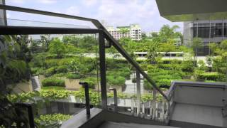 'singapore: biophilic city'