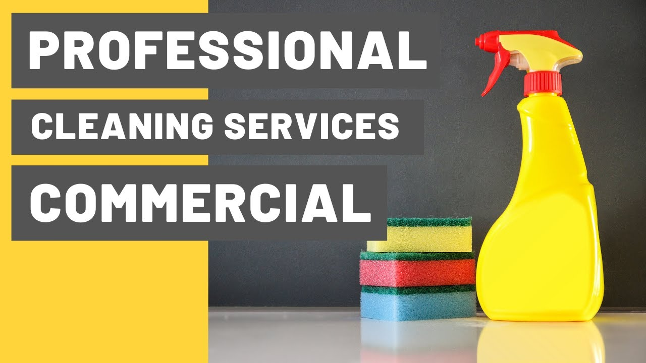 Professional Cleaning Services Commercial Ads | Home Cleaning Services