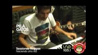 Sessiones Reggae Instrumental - Reggae en PelaGatos - Naciendo otra vez