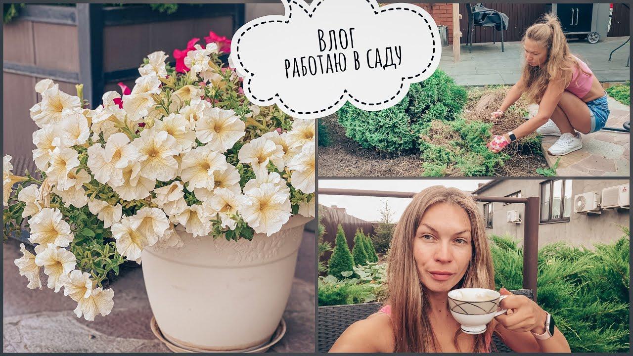 Vlog | Работаю в саду | садовый центр | наш сад осенью