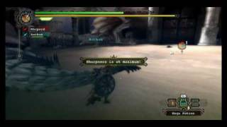 Monster Hunter Tri - Three Wyverns Arena S-Rank Tutorial