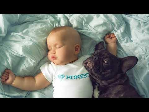 Дружба пеленок малыш щенок за 30 января