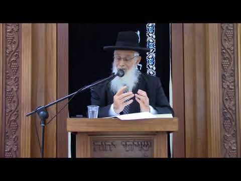 עד ודיין מצטרפים - שיעור כללי מסכת כתובות - הרב יעקב אריאל