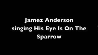 James Anderson singing His Eye Is On The Sparrow (11 years old)
