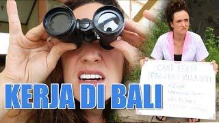 Video The Best Job in Bali (Pekerjaan paling Bagus di Bali) download MP3, 3GP, MP4, WEBM, AVI, FLV November 2017