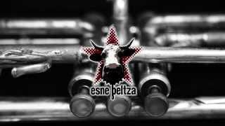 ESNE BELTZA. Haizeak & Brass section