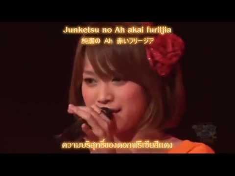 Kamei Eri Akai Freesia「赤いフリージア」(Live) (Thai sub)