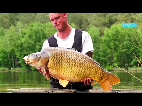 ETANG DU VAULAURENT - Carp Fishing in France with FishermanHolidays.com