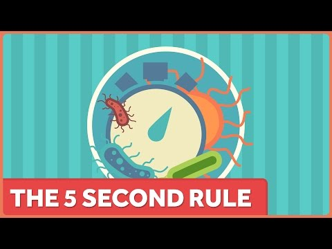 The 5 Second Rule: It's Still Not a Thing.
