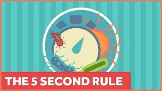 The 5 Second Rule: It's Still Not a Thing. thumbnail