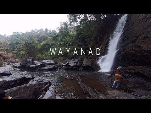Wayanad | Best Place To Visit In Kerala Around December