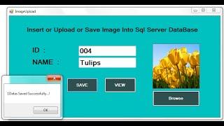C# Upload or Insert Image into SQL DataBase