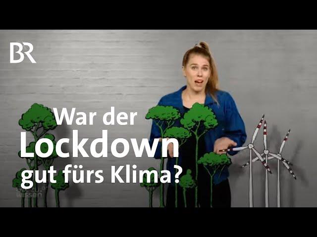 Erholung für die Natur durch das Coronavirus: War der Lockdown gut fürs Klima?   Gut zu wissen   BR