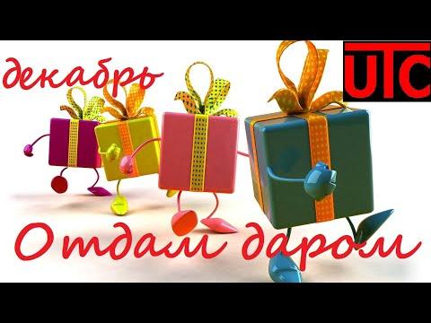 Отдам даром! Халява для Тольятти и не только! Декабрь 2019. Впервые на канале - розыгрыш по России!