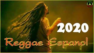 Reggae Español | Reggae Español Exitos 2020