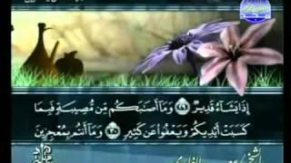 القارئ سعد الغامدي - سورة الشورى كاملة