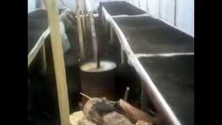 видео Технология выращивания зелёного лука