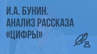 Р.Р. И.А. Бунин. Анализ рассказа