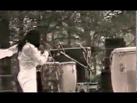 "MADE IN FRANCE (reggae) - ""In Africa""  live"