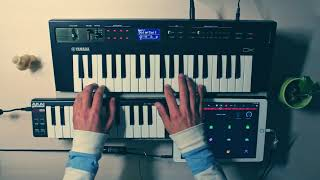 Loops Jam #4 : 84 Pontiac Dream (Boards of Canada Cover) : ft. GarageBand, Yamaha Reface DX & more