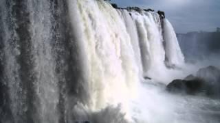 Brazil - A Natural History: Fragile Forest trailer