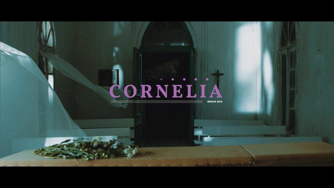 Download The Guadaloops - Cornelia