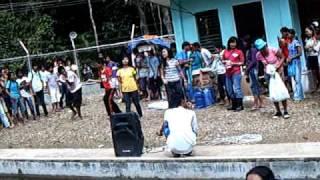 tree planting sandoval roxas palawan,philippines