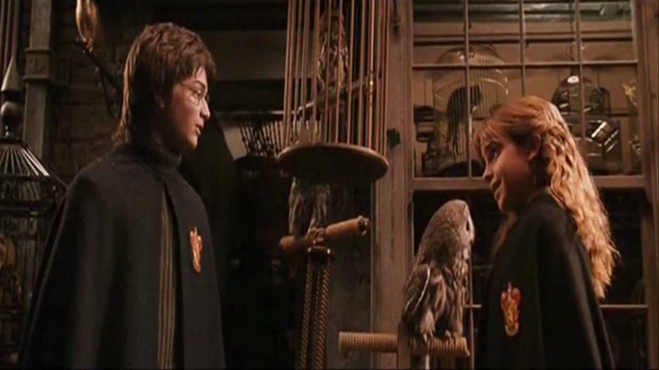 Harry & Hermione scenes HP and the Chamber of Secret - YouTube