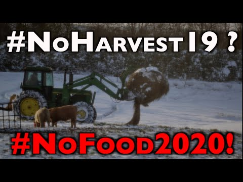 ALERT: Fall Blizzard Risks 10-20% US Acres? -- #NoHarvest2019 is #NoFood2020