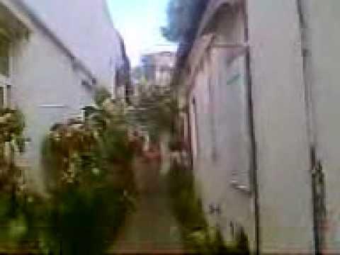 Anti social behaviour Gibraltar 1 www.aplanet.info