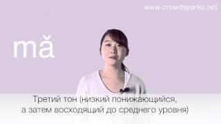 Китайский язык бесплатно  Урок 1: Тоны в китайском языке