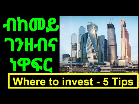 #47   5 Areas for a successful Investment