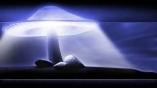 Infected Mushroom - Echonomix