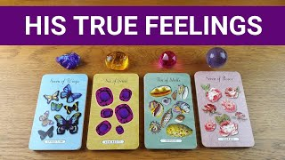 HOW DOES HE *REALLY* FEEL ABOUT ME? 💖 *Pick A Card* Love Tarot Reading Twin Flame Soulmate Ex Crush