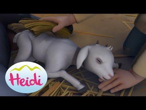 Gl�ckchen wird geboren - Heidi