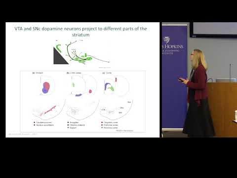 Patricia Janak - How Does Dopamine Mold Your Behavior?