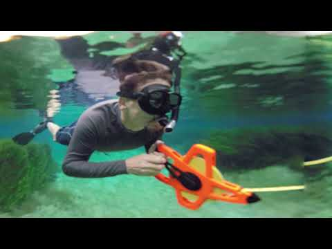 Rainbow Springs Aquatic Preserve 360 video